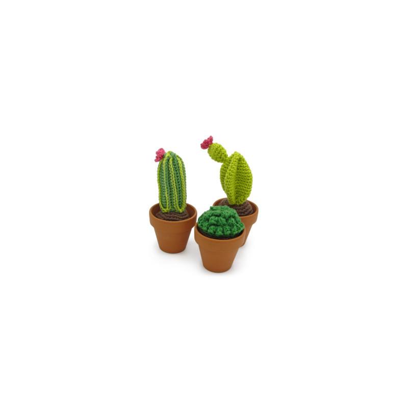 Kit crochet - Cactus